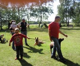 Hundesportfreunde Steinfeld ´09/´15/´16